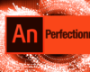 Formation animate perfectionnement